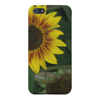RED SUNFLOWER CASE COVER FOR iPhone 5/5S