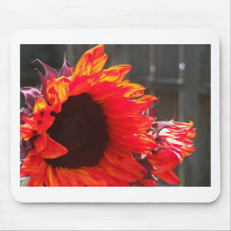 Red Sunflower Mouse Pad