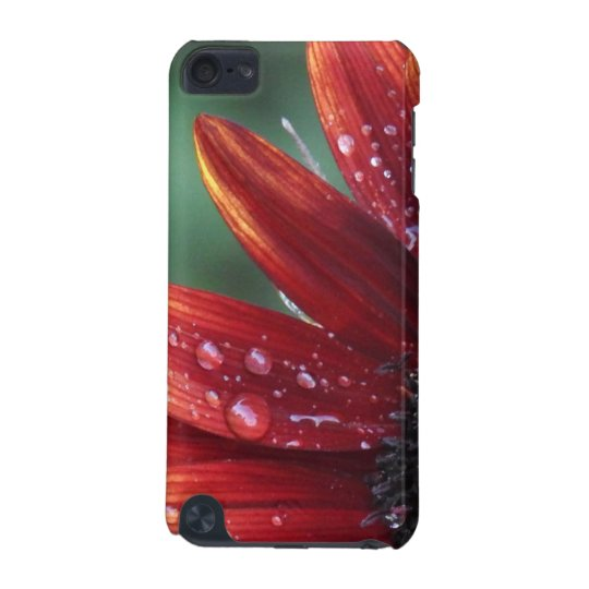 Red Sunflower Petals And Rain Drops iPod Touch (5th Generation) Cover