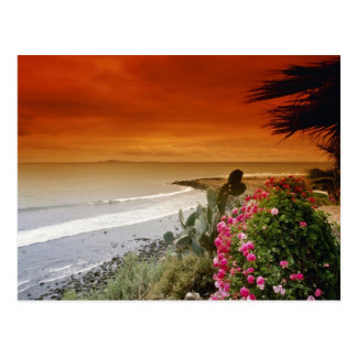 Red Sunset, San Miguel Point, Baja California, Mex Postcard
