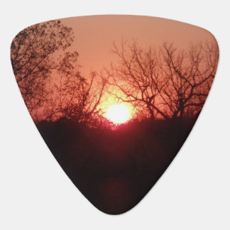 Red Sunset Silhouette Guitar Pick