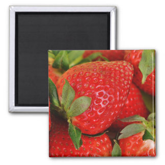 Red Sweet Strawberries Magnet
