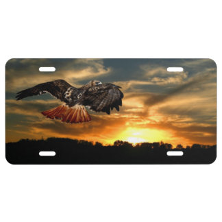 Red tail hawk at sunset license plate