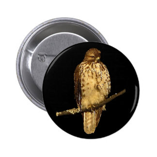 Red Tailed Hawk 2 Inch Round Button