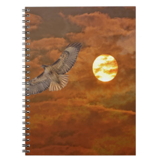 Red Tailed Hawk and Red Skies Notebook