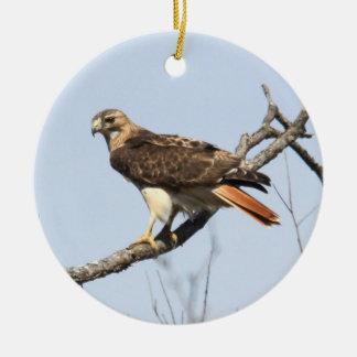 Red-tailed Hawk Ceramic Ornament