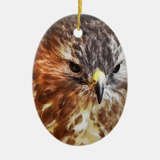 RED TAILED HAWK CERAMIC OVAL ORNAMENT