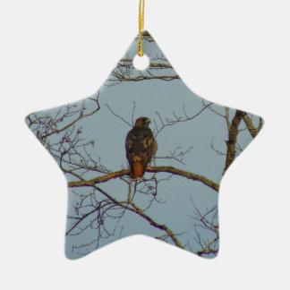 Red Tailed Hawk Ceramic Star Ornament