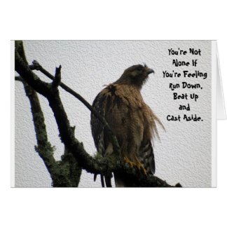 Red Tailed Hawk Feeling Down Card