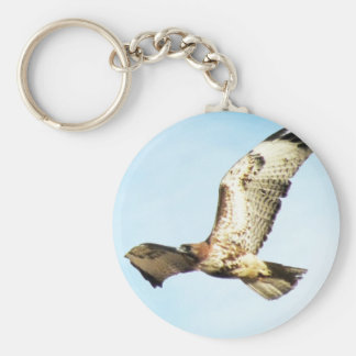 Red-tailed Hawk in Flight Photo Basic Round Button Keychain