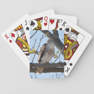 Red Tailed Hawk in flight Playing Cards