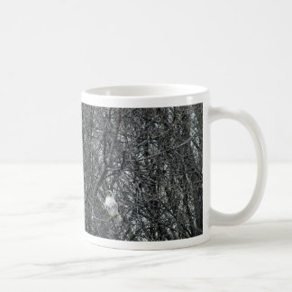 Red Tailed Hawk in full winter molt Coffee Mug