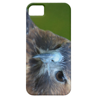 Red-tailed Hawk iPhone 5 Covers