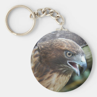 Red-tailed Hawk Photo Basic Round Button Keychain
