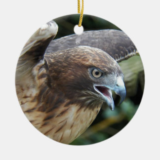 Red-tailed Hawk Photo Ceramic Ornament