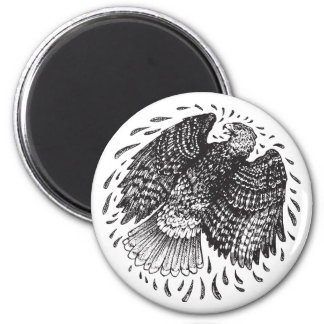 Red Tailed Hawk Round Magnet
