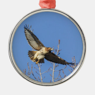 Red-tailed Hawk Silver-Colored Round Ornament