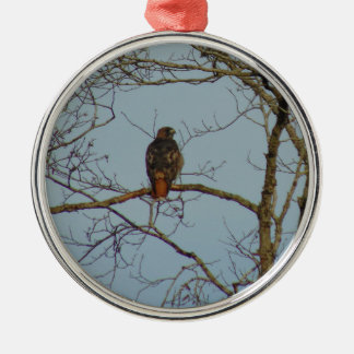 Red Tailed Hawk Silver-Colored Round Ornament