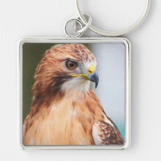 Red Tailed Hawk Silver-Colored Square Keychain