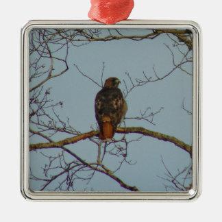Red Tailed Hawk Silver-Colored Square Ornament