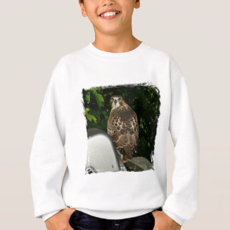 Red tailed Hawk Sweatshirt