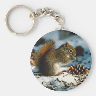 Red Tailed Squirrel Keychain