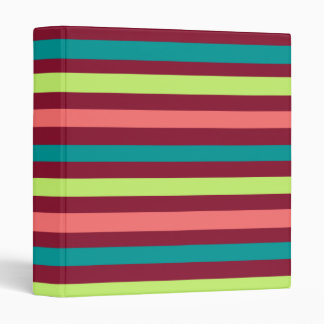 "Red Teal and Salmon Striped 1"" Vinyl Binders"