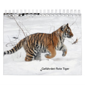 Red tigers as calendars