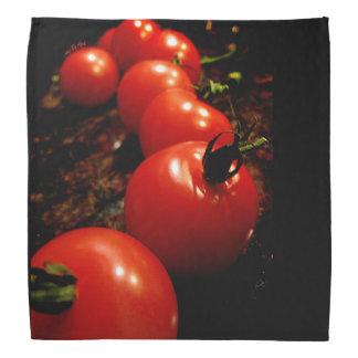 Red Tomato Bandana