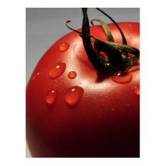 RED TOMATO FRESH FRUITS VEGETABLES HEALTHY YUMMY POSTCARD