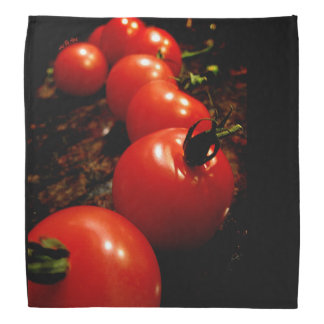 Red Tomato Kerchiefs