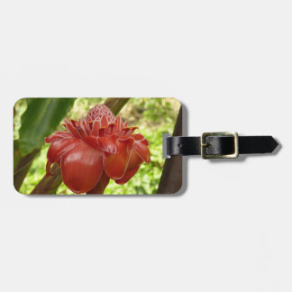 Red Torch Ginger Tropical Flower Photography Luggage Tag