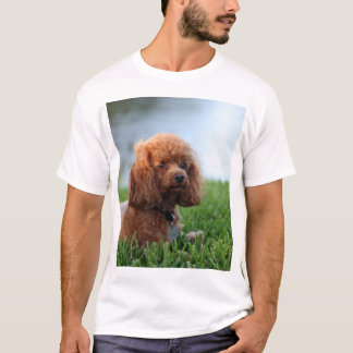 Red Toy Poodle T-Shirt