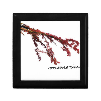 Red tree branch with memories gift box