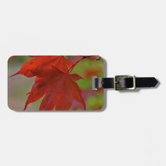 Red Tree Leaves Luggage Tag