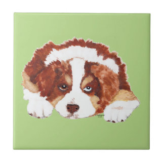 Red Tri Australian Shepherd Puppy Ceramic Tiles