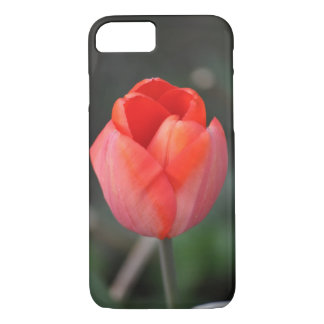 Red tulip case