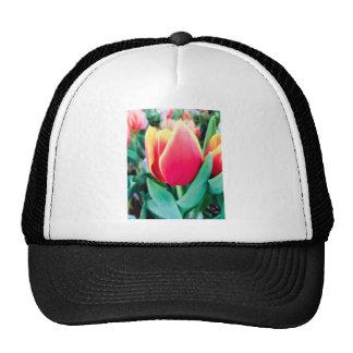 Red Tulip - Customizable! Trucker Hat