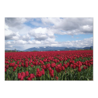 Red Tulip Field Card