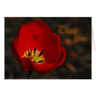Red Tulip Thank You Card