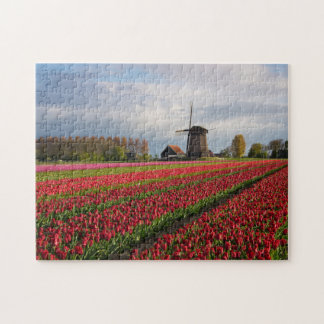 Red tulips and a windmill jigsaw puzzle