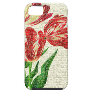 Red Tulips Calligraphy Case For The iPhone 5