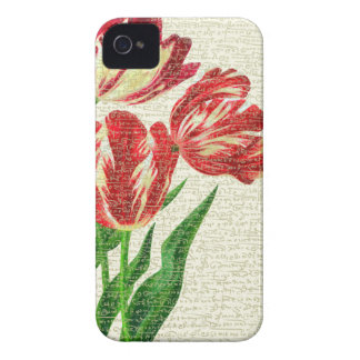 Red Tulips Calligraphy iPhone 4 Case