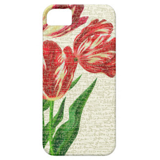 Red Tulips Calligraphy iPhone 5 Cover