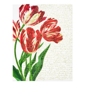 Red Tulips Calligraphy Letterhead