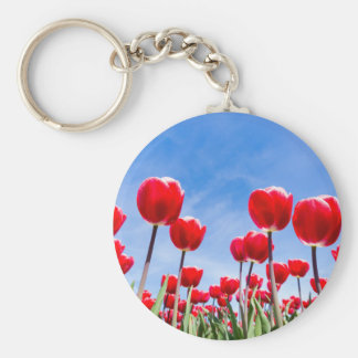 Red tulips field from below with blue sky basic round button keychain