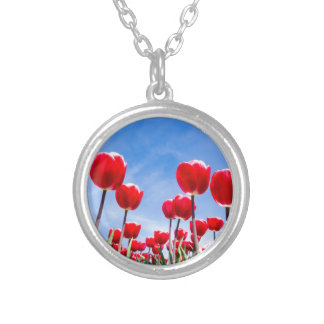 Red tulips field from below with blue sky silver plated necklace