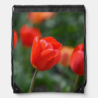 Red Tulips in the Garden Drawstring Bag