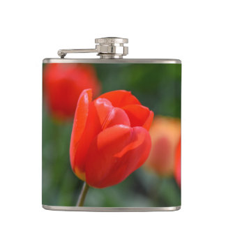 Red Tulips in the Garden Hip Flask