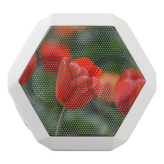 Red Tulips in the Garden White Bluetooth Speaker